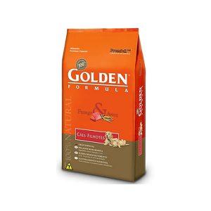 golden_filhotes_frango