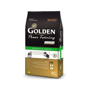 golden_gatos_filhotes