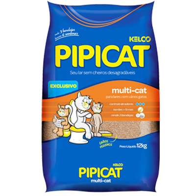 pipicat_multi_cat